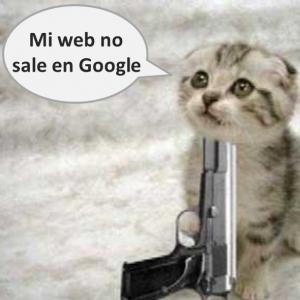 MI web no sale en Google