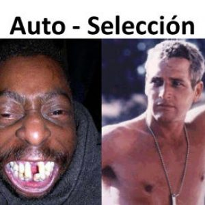 Inbound-Marketing-Auto-selección