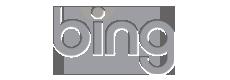 Hacer paginas web baratas Posicionamiento en bing