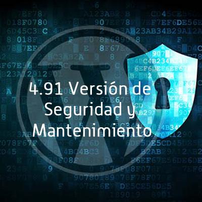 paginas-web-baratas-y-paginas-web-a-medida---Seguridad-WP 4.91-2
