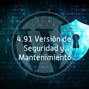 paginas-web-baratas-y-paginas-web-a-medida---Seguridad-4.91